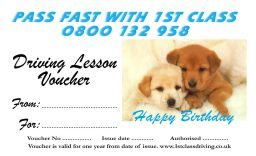Birthday voucher Puppies